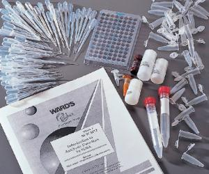 Ward's® Introduction to Antibody Detection by ELISA Lab Activity