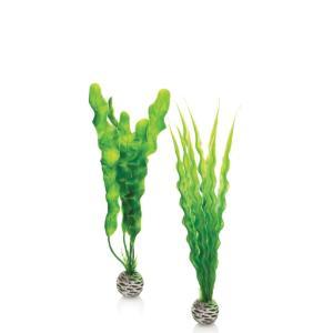 biOrb® Easy Plant Sets