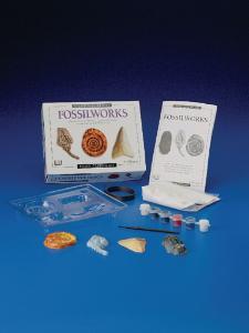 Fossilworks Eyewitness Kit