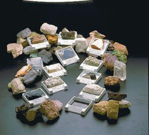 Ward's® University Rock-Forming Mineral Collection