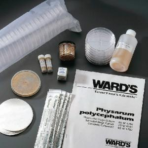 Ward's® Physarum Culture and Study Kit