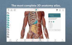 Visible Body®: Human Anatomy Atlas