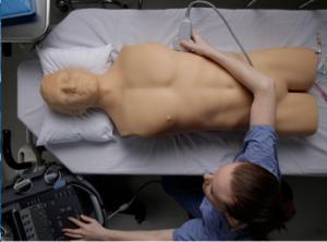 Fast ultrasound training model
