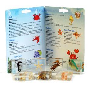 Aquatic plastomount collection set of 7