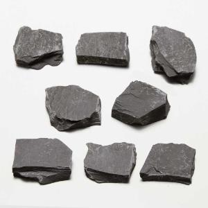 Ward's Science Essentials® Gray Slate