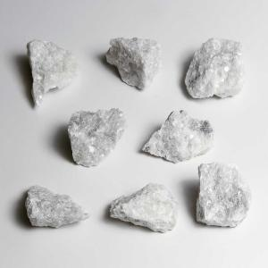 Ward's Science Essentials® White Marble