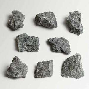 Ward's Science Essentials® Serpentinite