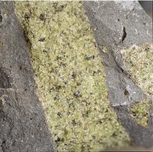 Ward's® Mantle Xenolith