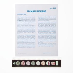 Human Disease Microslide