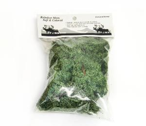 Stormwater Floodplain Simulation System, Reindeer-Moss-colored