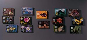 Audubon Society Pocket Field Guides