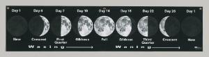 Lunar Cycle Banner