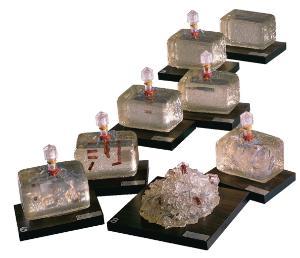 Bacteriophage Model Set
