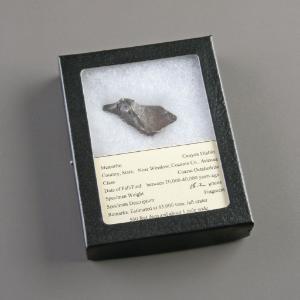 Iron Octahedrite (Coarse) (IAB)