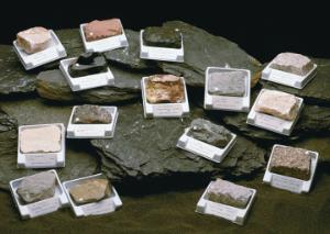 Classroom Rock Collection