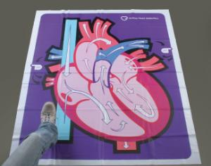 Human Heart Walk-Thru