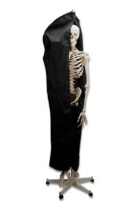 Skeleton Protective Cover-Black