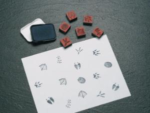Animal Tracks Stamps