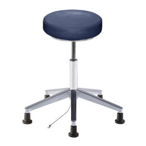 Biofit rexford series static control stool, medium seat height range with aluminum base and glides