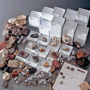 Ward's® College Stratigraphic Fossil Collection
