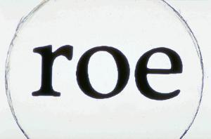 """Printed Letters """"roe"""" Slide"""
