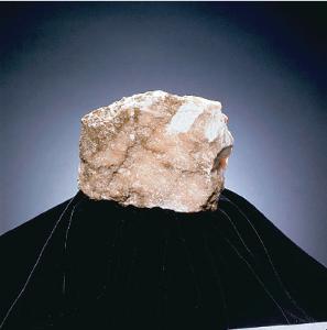 Ward's® Gypsum (Massive)
