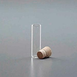Shell Vials with Corks