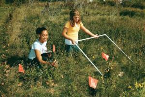 Meter Ecology Activity