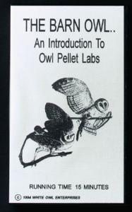 The Barn Owl: Introduction To Owl Pellet Labs  Video