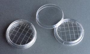 Akro-Mils Partitioned Petri Dishes