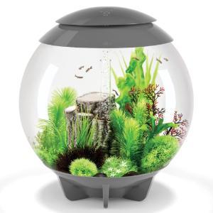 biOrb® HALO Aquaria