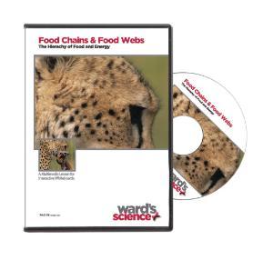 NewPath FOOD CHAINS & WEBS Interactive Whiteboard Digital Download
