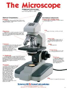 Microscope Poster Boreal Science