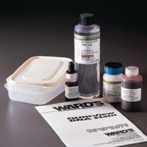 Ward's® Agarose Gel Electrophoresis Lab Pack