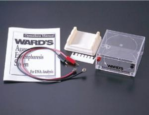 Ward's® Introductory Electrophoresis Hardware System