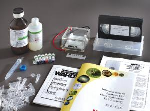 Ward's® Introduction to Electrophoresis Lab System Set
