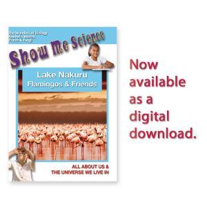 Show Me Science: Lake Nakuru–Flamingos and Friends