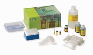 Comparative Proteomics Kits