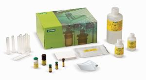 Bio-Rad® Comparative Proteomics Kit II: Western Blot Module