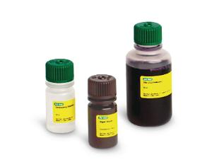 Bio-Rad® ThINQ!™ Photosynthesis and Cellular Respiration Kits