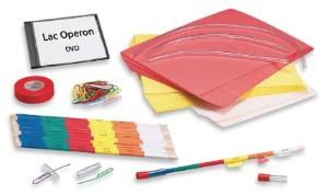 Ward's® Lac Operon: Turning On Your Genes Activity Lab Activity