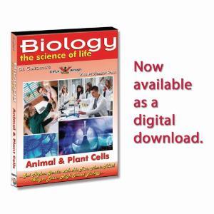 Animal & Plant Cells