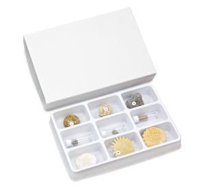 Echinodermata Collection Set