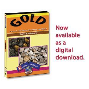 Gold - Rocks & Minerals