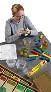 Cell Assembly Required Lab Activity