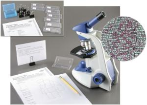 Ward's® The Cell Theory: A Microscopic Journey Lab Activity