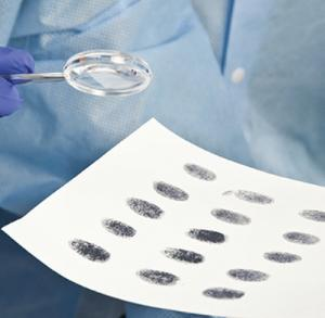 Whose Fingerprints Were Left Behind Lab Activity