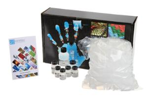 Introduction to Toxicology Lab Activity