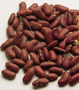 Kidney Bean Seeds