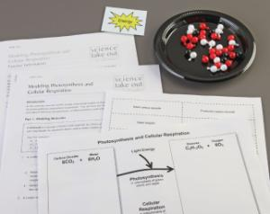 Science Take-Out® Modeling Photosynthesis And Cellular Respiration